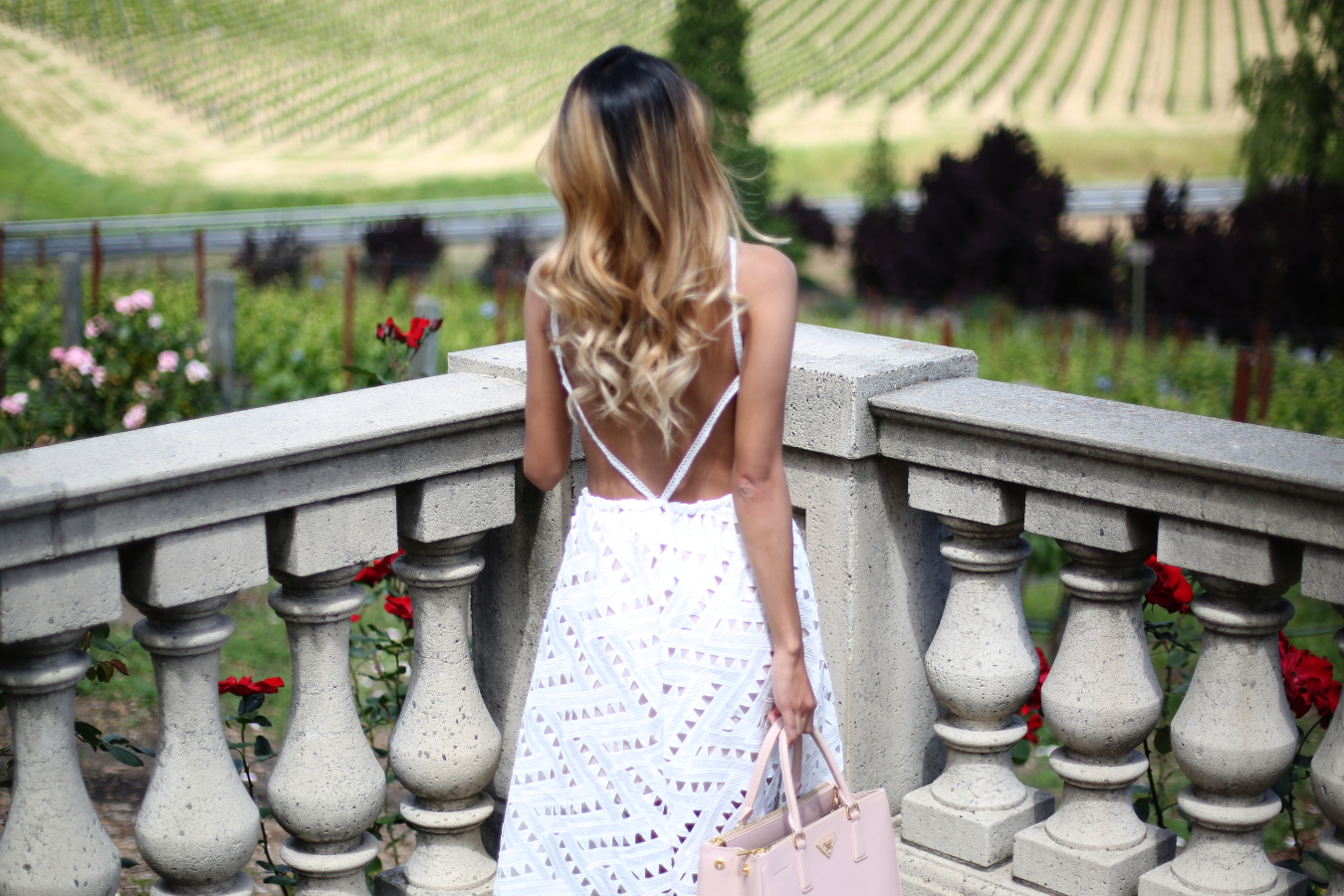 Beyond Basic Blog What to Wear Wine Tasting Line Dot Geo Lace Dress Domaine Carneros