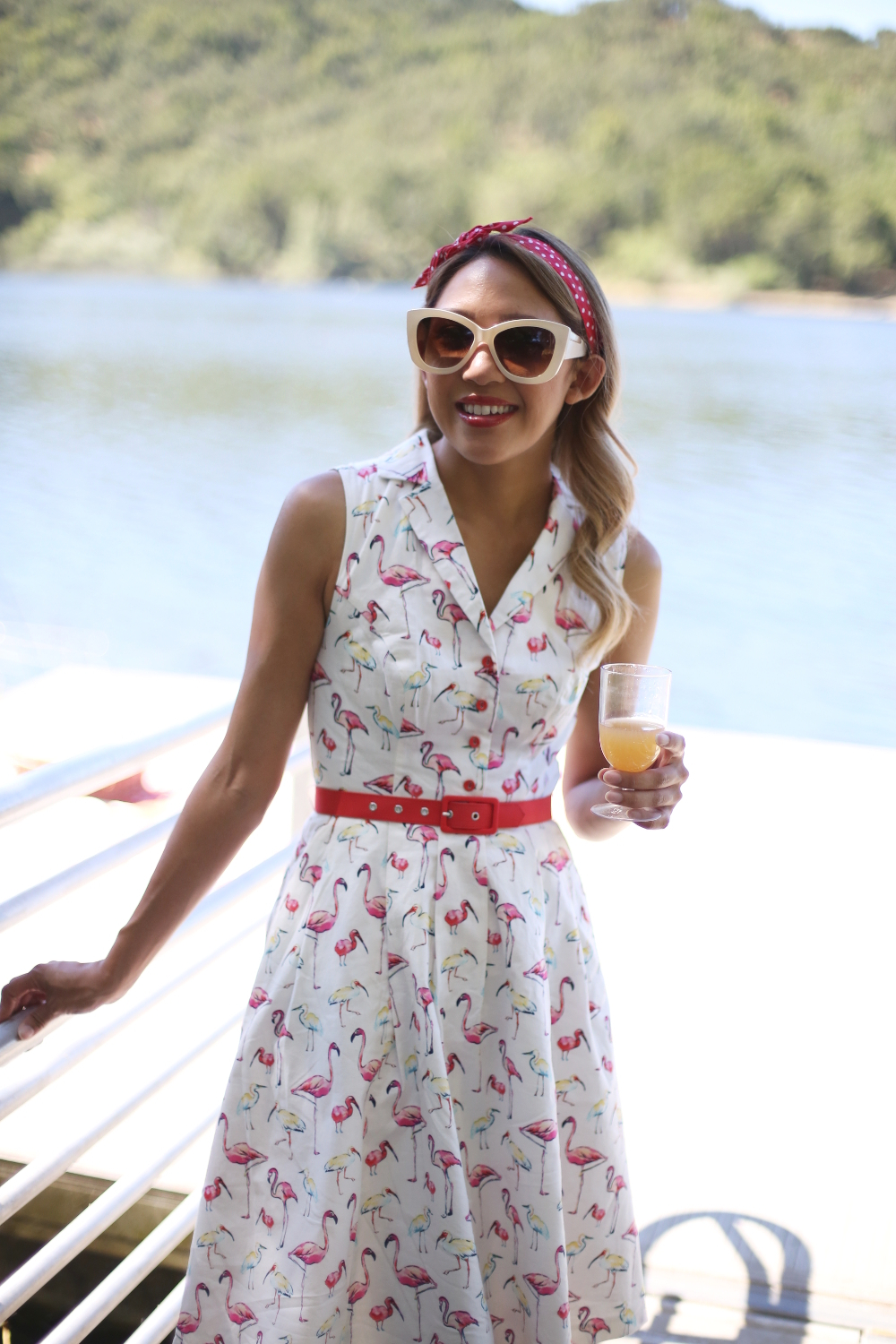 Beyond Basic Blog Mod Cloth Flamingo Dress Summer Style Picnic Ideas