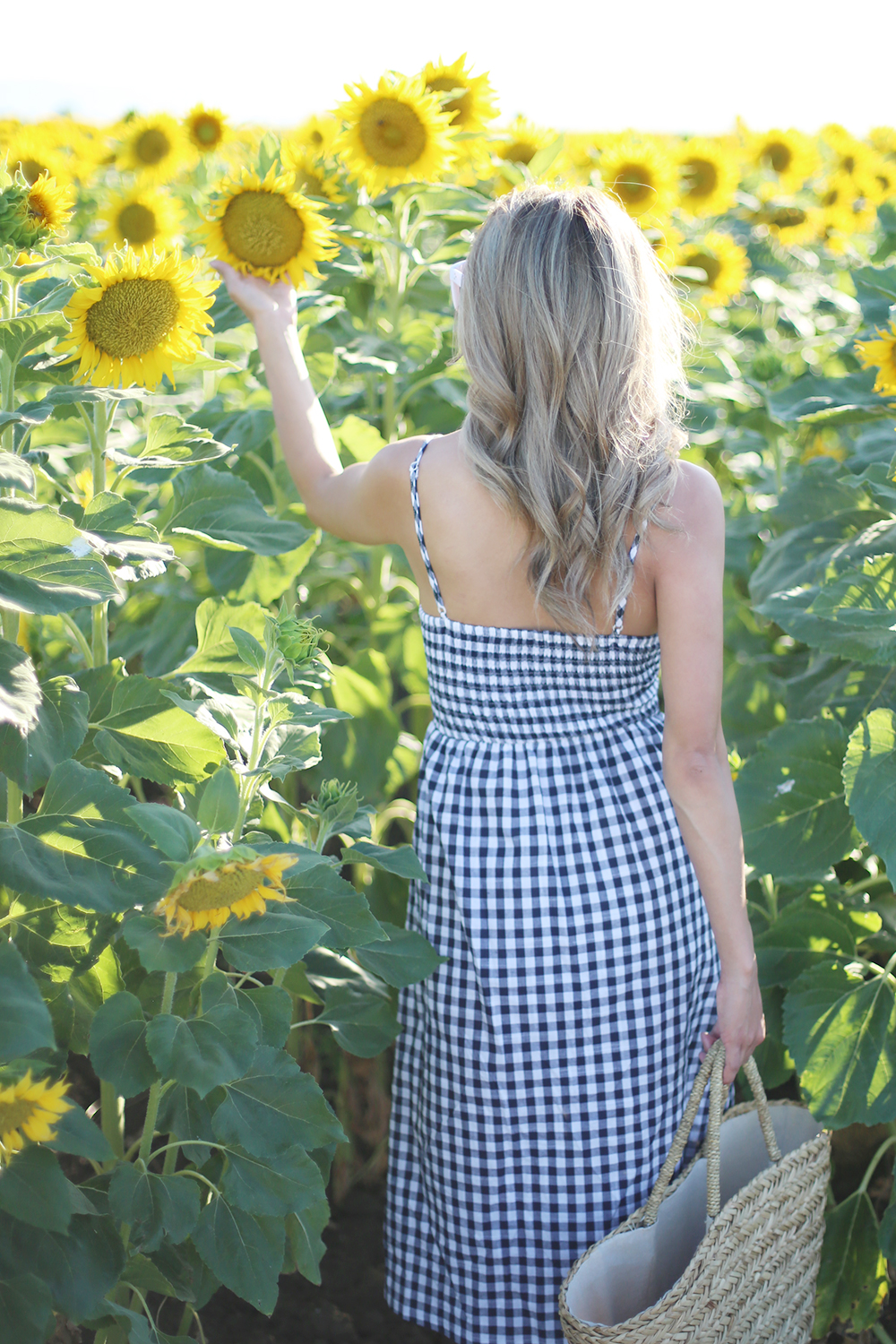 Beyond Basic Blog Field of Sunflowers Dixon CA Gingham Dress